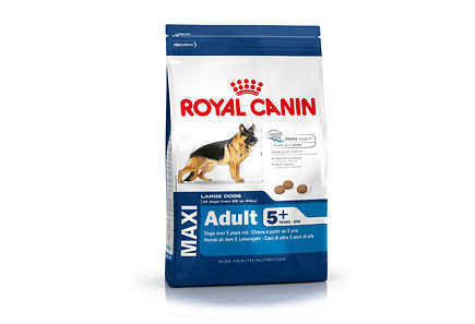 Image for Royal Canin Maxi Adult 5+  koiranruoka 4kg from Kodin Terra
