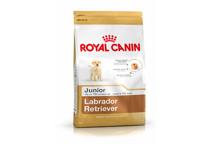 Image for Royal Canin Labrador Retriever Junior koiranruoka 12kg from Kodin Terra
