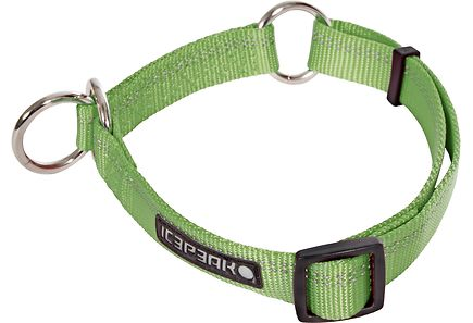 Image for Icepeak Pet Winner Slip koiran panta XL, vihreä from Kodin Terra