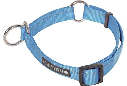 Image for Icepeak Pet Winner Slip koiran panta XL, turkoosi from Kodin Terra