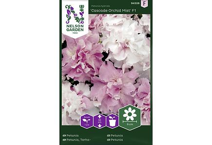 Image for Tarhapetunia, Cascade Orchid Mist F1 from Kodin Terra