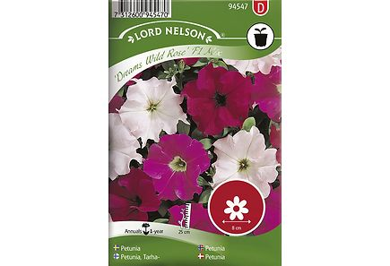 Image for Tarhapetunia, Dreams Wild Rose Mix from Kodin Terra