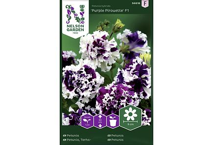Image for Tarhapetunia, Purple Pirouette F1 kerrottu from Kodin Terra
