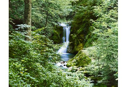 Image for Idealdecor valokuvatapetti Waterfall in Spring 00279 8-osainen 366x254cm from Kodin Terra