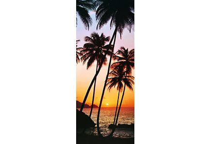 Image for Idealdecor ovikuva Sunny Palms 00529 86x200cm from Kodin Terra